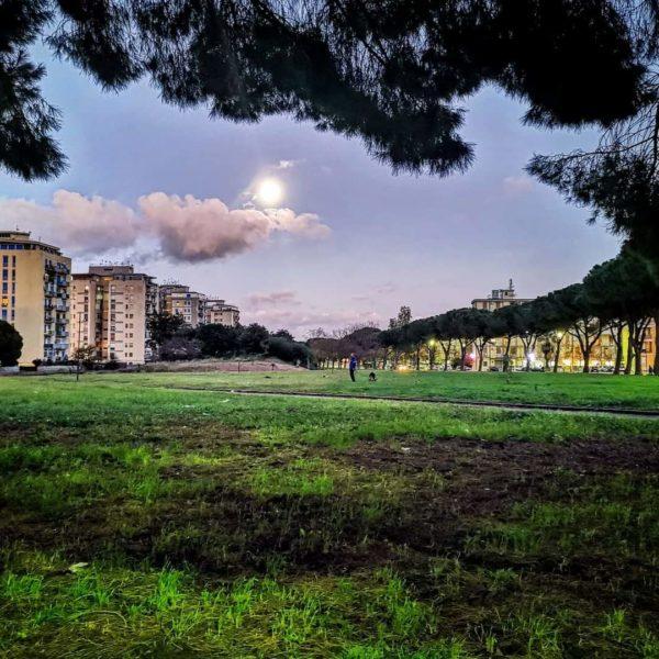 Jane's Walk a Borgo Nuovo